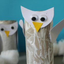 Toilet Paper Roll Snowy Owl- Crafts On Sea