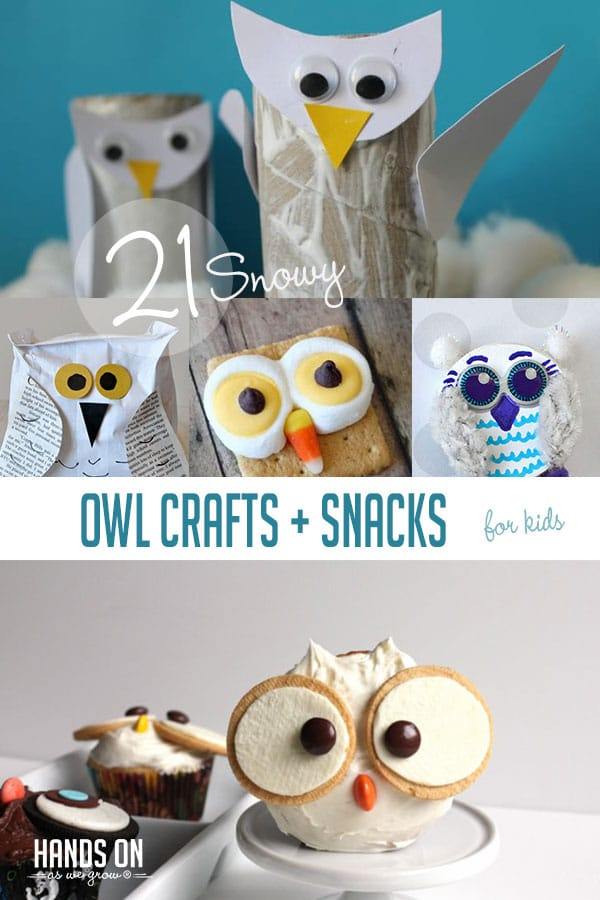 Explore cold-weather animals with 21 cute and fun snowy owl theme crafts, activities, and snacks!