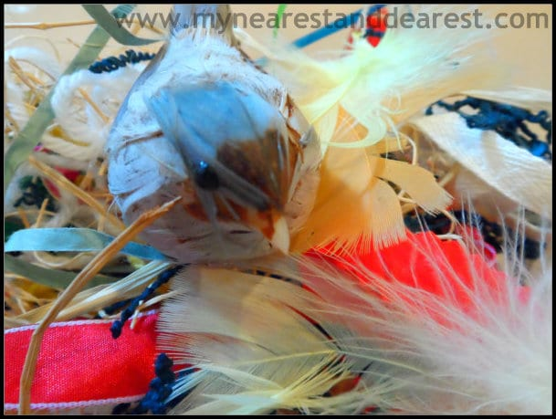 Bird-Nest-Activity-for-Kids