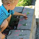 Nature Walk Scavenger Hunt: Leaf Counting