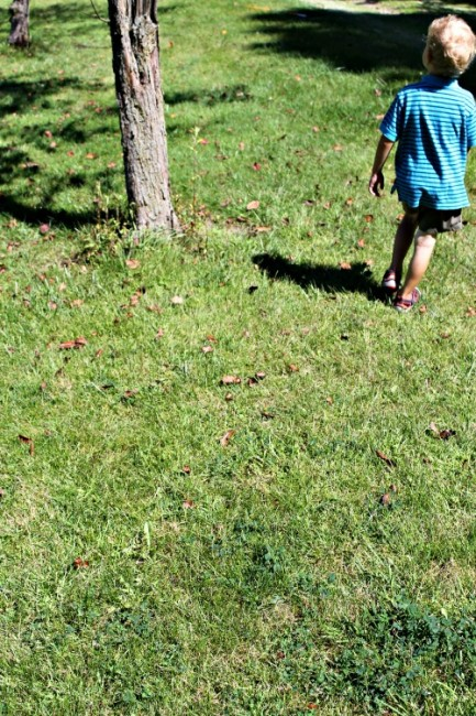 nature walk ideas for kids
