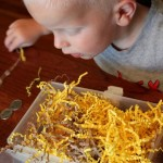 Toddler Sensory Activity: Treasure Box