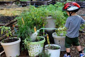Create An Edible Sensory Garden for Children