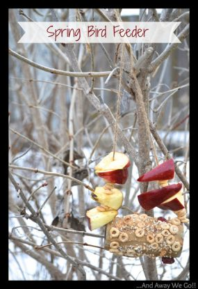 Spring Bird Feeder Craft for Kids from The Taylor House