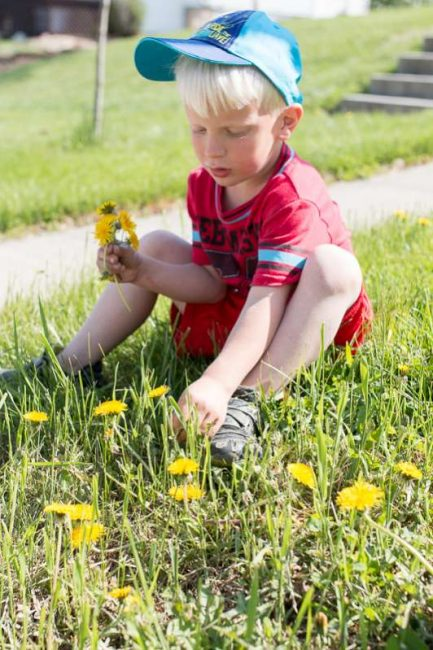 How to get the kids to pick all the dandelions in the yard