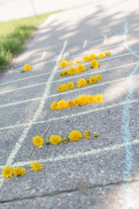 A dandelion counting race for the kids to pick them from the yard