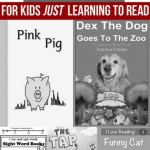 5 Beginning Reader Books for Kids JUST Learning to Read