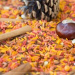 Pumpkin Scented Rice Sensory Bin: Bonding with Your Kids