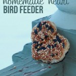 Homemade Heart Bird Feeder