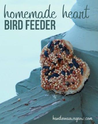 Homemade Heart Bird Feeder