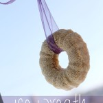 Edible Ice Wreath Bird Feeder Craft