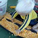 Sensory Activity: Hauling Corn