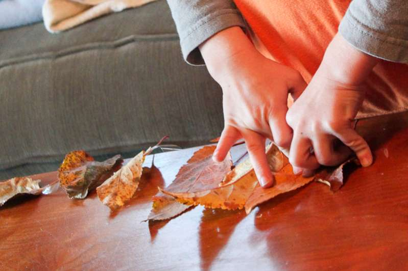 How to make a leaf garland to decorate for fall
