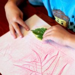 Leaf Rubbings Nature Match Up