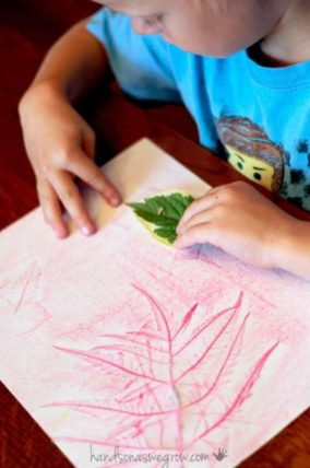 Leaf Rubbings Match Up