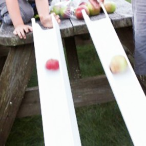 Apple Gravity Experiment