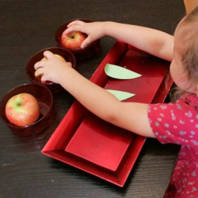 Apple Invitation to Count