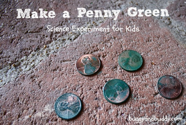 make-a-penny-green-science-experiment-for-kids
