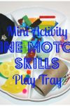 mini-activity-fine-motor-skills-tray