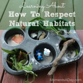 Simple Activity for Preschoolers To Learn About Respect For The Environment from Moments A Day