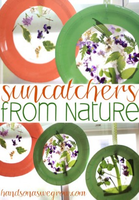 nature-suncatcher