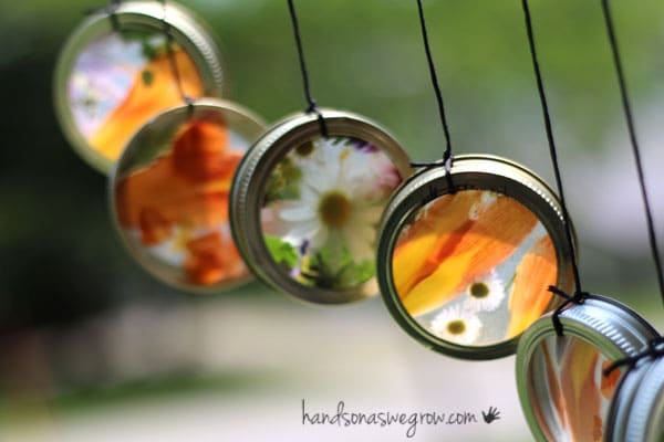 Nature suncatcher wind chimes hung up