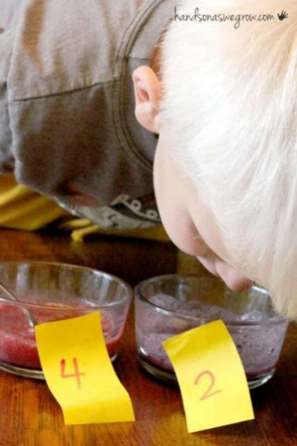 Smell what fruit it is - part of a taste test for kids