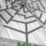 Giant Spider Web Maze for Kids