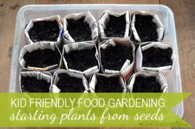 Kid Garden: Starting Plants from Seeds