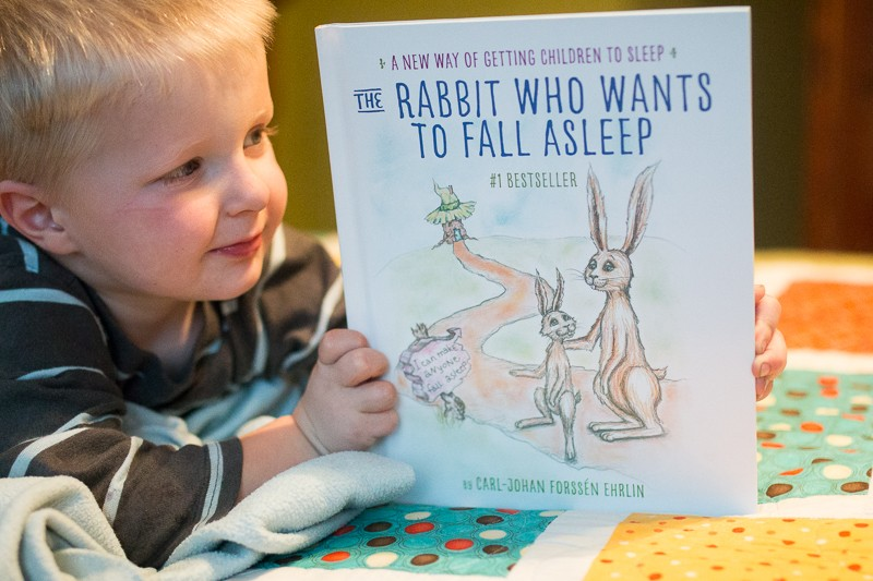 the rabbit who wants to fall asleep-20151117-8